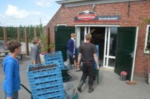 Fruitteeltbedrijf Oudebosch kersen