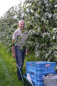 Fruitteeltbedrijf Pruimen
