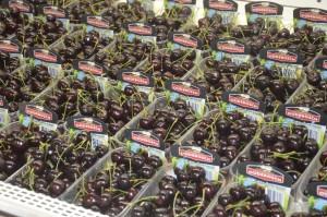 Fruitteeltbedrijf Kersen